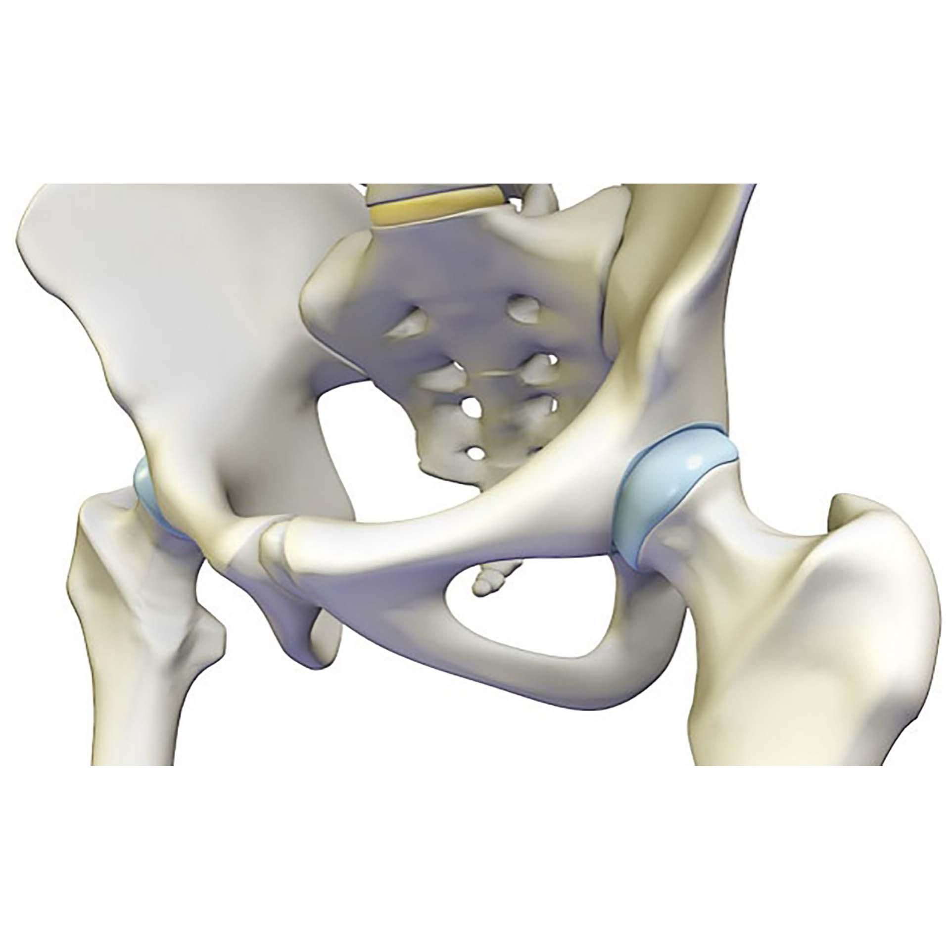 térdízületi kezelés zselatinnal kattan a térdízületben nincs fájdalom